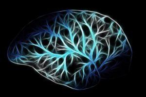 脳で考える