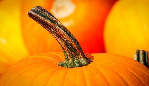 女性に人気の野菜!ホクホクの食感がたまらない「かぼちゃ」の豆知識